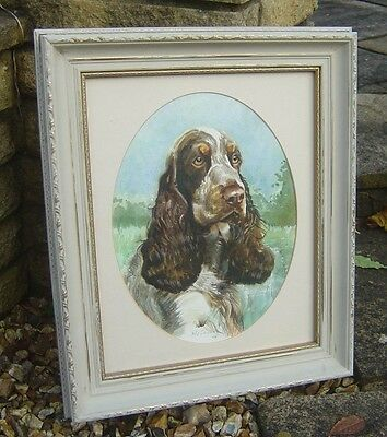 Beautiful Original Water Colour Picture Of A Brown & White Spaniel Dog Signed