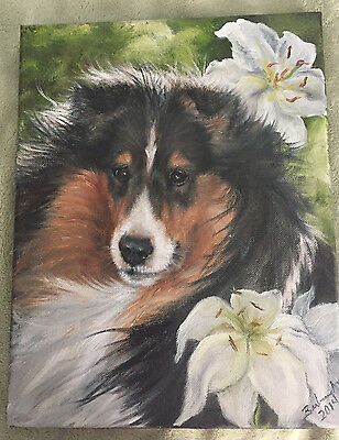 Original Oil Painting Of A Tri Color Sheltland Sheepdog Sheltie