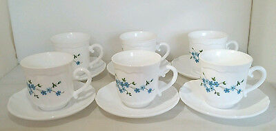 Set of 6 Arcopal white glass cups and saucers