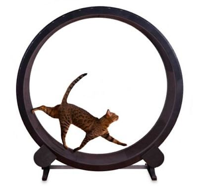 Cat Exercise Wheel, As New, Fully Constructed But Never Used