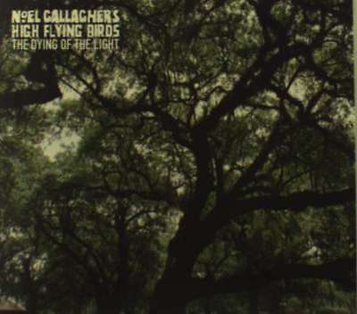 """Noel Gallagher's High Flying B - The Dying Of The Light NEW 7"""""""