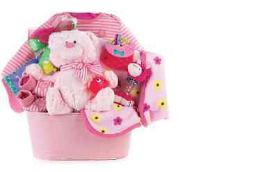 Newborn Baby Girl Gift Basket-Clothes, Toys, Ty Plush