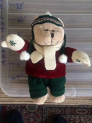 "10"" Starbucks Beautiful Collectable Teddy Bear ��"