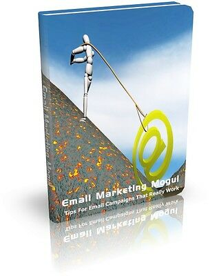 Email Marketing Mogul PDF eBook with Full resale rights!