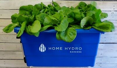 The Home Hydro Gardens Indoor Hydroponic Growing System