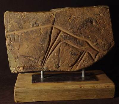 Authentic Neolithic Saharan Rock Art, Petroglyph, 12 inches