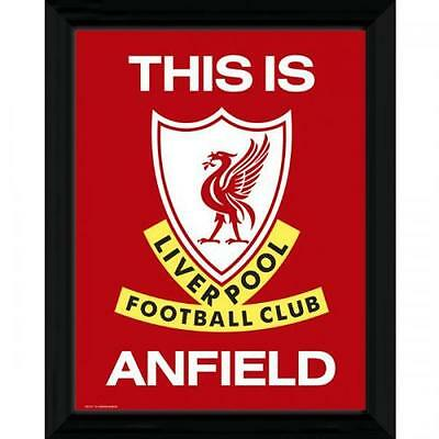 """Official Liverpool FC Framed Picture 16"""" x 12"""" - This Is Anfield"""