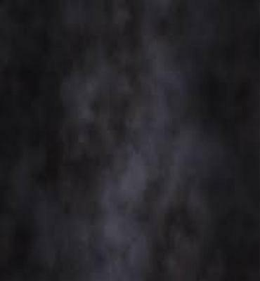 Pro 10'x20' 100% Muslin Photographic Backdrop Background DW-878