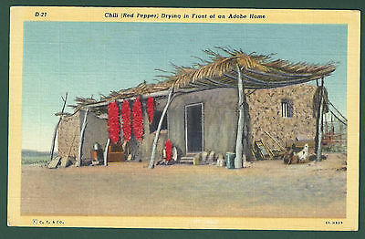 Vintage Unused Linen Postcard Chili Red Pepper Drying in Front of Adobe Home AZ