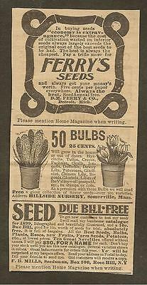 VINTAGE AD FOR FERRY'S SEEDS & HILLSIDE NURSERY, LATE 1800's
