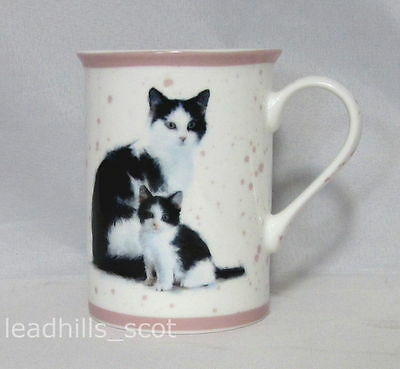 Black and White Cat with Kitten Boxed China Mug by Macneil