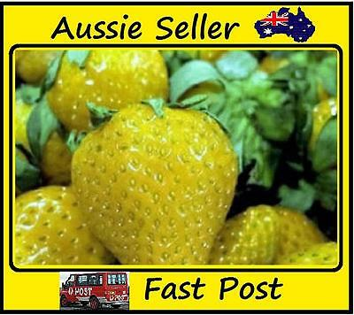 200pcs New Yellow Strawberry Seeds Planting Nutritious Delicious Fruit Garden