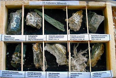 10 Asbestos Chrysotile Minerals Xtls Classroom Educational Project