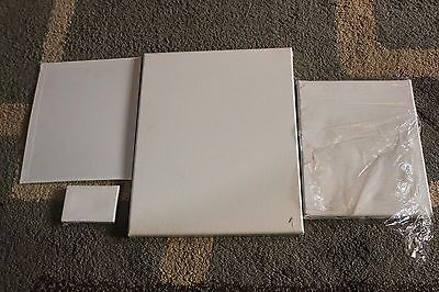 Mixed Art Lot Canvas Paper Moore Moab Canson Infinity Fellowes Daler Rowney