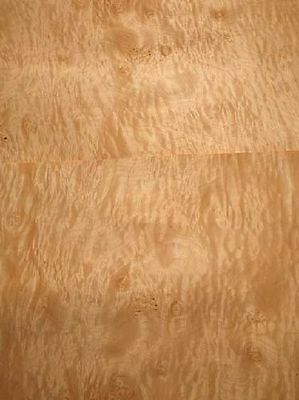 Muschel  Ahorn Furnier Tonholz quilted Maple C 119x32/34cm 2 Bl