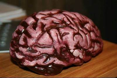 Bloody Fake Human Brain Scary Halloween Party Zombie Prop NEW