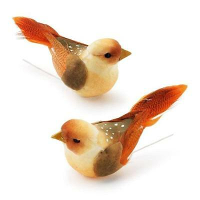 Knorr Prandell 60mm Decoration Birds with Feathers 2pcs