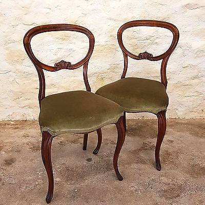 Victorian Pair of Rosewood Balloon Back Dining Chairs - C1870 (Antique)