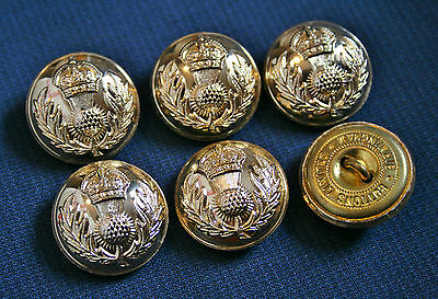 6x Gold Royal Scot Fusilers Military Coat Jacket Blazer Buttons 19mm Scots