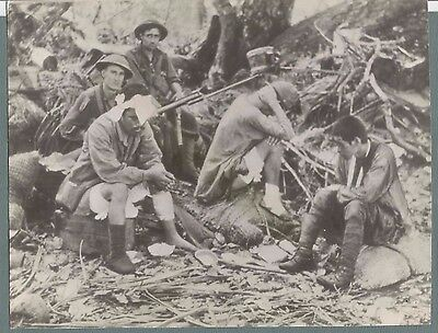 Vintage Press Photo  1943 Wwii Japanese Prisoners In New Guinea #1041