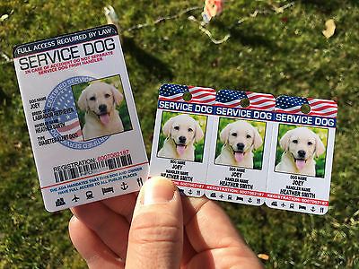 Service Dog Holographic Id Card + Keychain Collar TAG + Online Registration