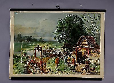 antique wall chart rice plantation wall déco chinese restaurant store e5261