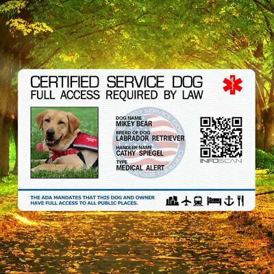 Service Dog Id Card For Service Animal Professional Ada Rated 10