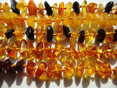 LOT- 5 pcs POLISHED  BALTIC AMBER BABY  NECKLACES -13inches