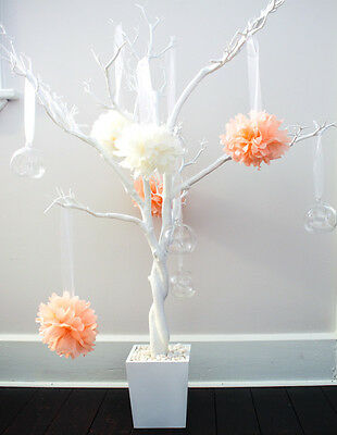 Manzanita trees/centrepieces/wishing tree/display tree for sale