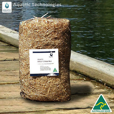Barley Straw Bale - 1kg For the Prevention of New Algae Growth in Dams & Ponds