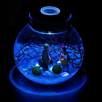 10cm Glass Bottle Jar Container w/ Glow LED Wood Cork Stopper Lamp Lighting