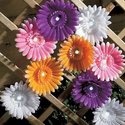12 Solar Powered Daisy Flower Led String Lights Colour Changing Multi Coloured