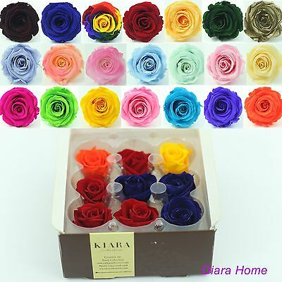 box of 9 Preserved 100% Fresh Natural Real Flower rose - Birthday, Special gift