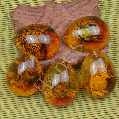 10 Types Resin Amber Butterfly Scorpion Crabs Ants Spider Insect Stone Pendant
