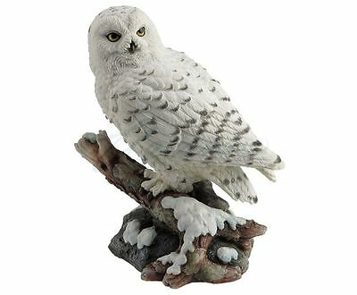 Snow Owl Perching On Branch Statue Sculpture Figure - GIFT BOXED