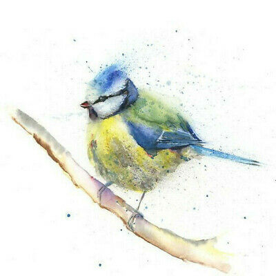 HELEN ROSE Limited Print BLUE TIT wildlife art watercolour painting   317