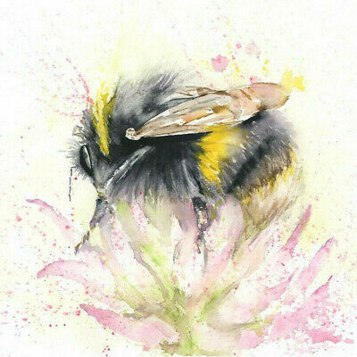 HELEN ROSE Limited Print BEE in CLOVER wildlife art watercolour painting   345