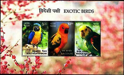 India 2016 Exotic Foreign Birds 3v MS MNH Macaw Sun Conure Bright colors