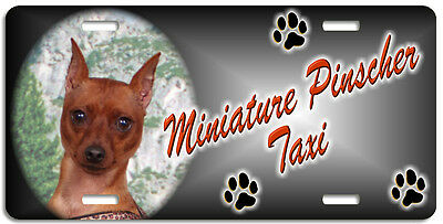 Miniature Pinscher red Taxi Line License Plate (( LOW CLEARANCE PRICE ))
