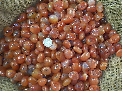 2000 Carat Lots of Polished Tumbled Carnelian + FREE Faceted Gemstone - HIGH END