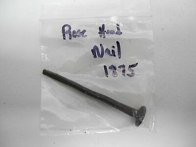 Antique 1875 Hand Forged Iron Rose Head Nail from Maine