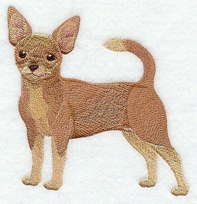 Finished Embroidery Chihuahua Dog