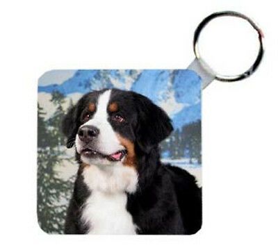 Bernese  Mountain  Dog  Personalized  Breed  Key  Chain