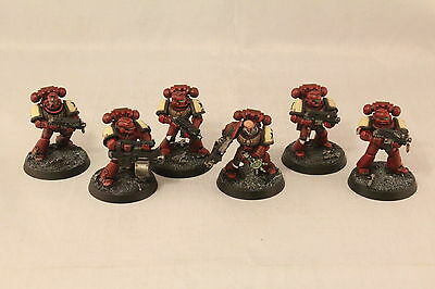 Warhammer Space Marine Black Templars Combat Squad Pro Painted