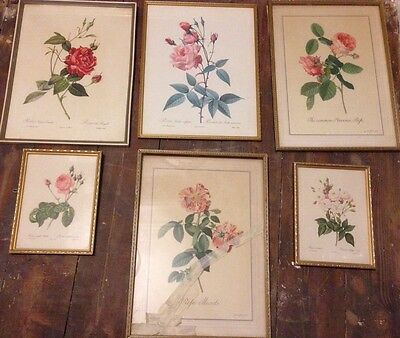 Vintage 60s Prints/Paintings/Illustrations Of Pink Roses Retro Shabby Chic Art