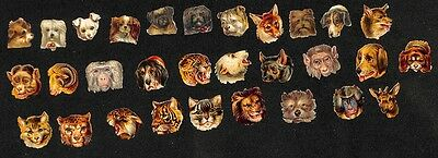 Lot mit 30x alte Oblate, Miniatur Köpfe, Wildtiere, Hunde, lithographiert #H581