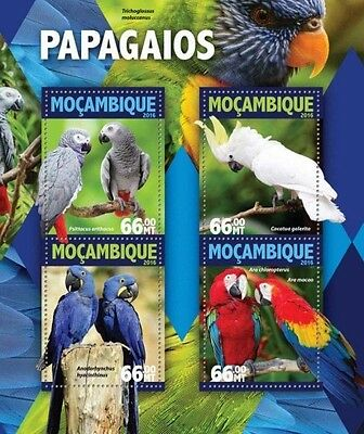 Z08 IMPERFORATED MOZ16129a MOZAMBIQUE 2016 Parrots MNH