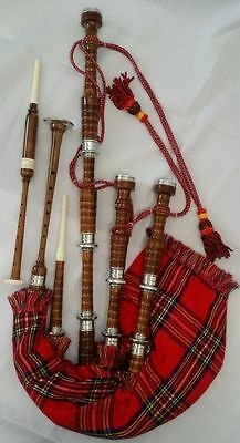 Scottish Highland Rosewood Bagpipe Full Silver Mounts Free Carrying Bag