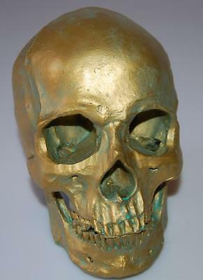 Realistic 1:1 Human Skull Model Anatomical Medical Skeleton Antique Bronze