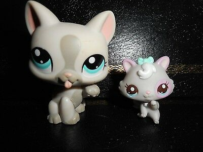 """Littlest Petshop Chat Chaton/Pet shop Kitty Cat #1472/2627 """"Very Good Condition"""""""